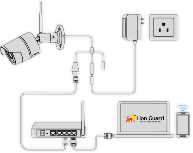 CCTV Lion Guard System